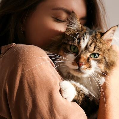cat-parent-thumbnail